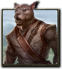 ON-race-Khajiit.jpg