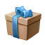ON-icon-container-New Life Gift Box.png