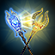 ON-icon-achievement-Wizard's Duel.png